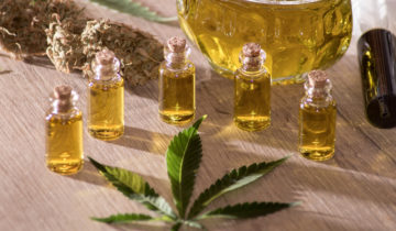 Decarboxylation – The Science Behind Getting High