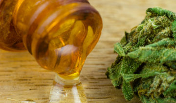 How To Make Cannabis Oil: Step-By-Step Guide