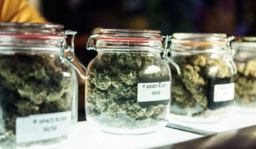 Cannabis Cup – Its History, Origins and Evolution
